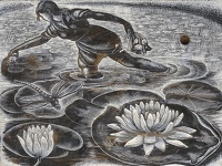 Artist Clare Leighton: Gathering Lily Pads BPL 702 1954